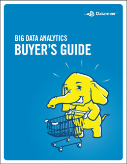 Datameer WP BDA Buyers Guide thumbnail